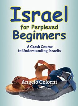 Israel for Perplexed Beginners - Review